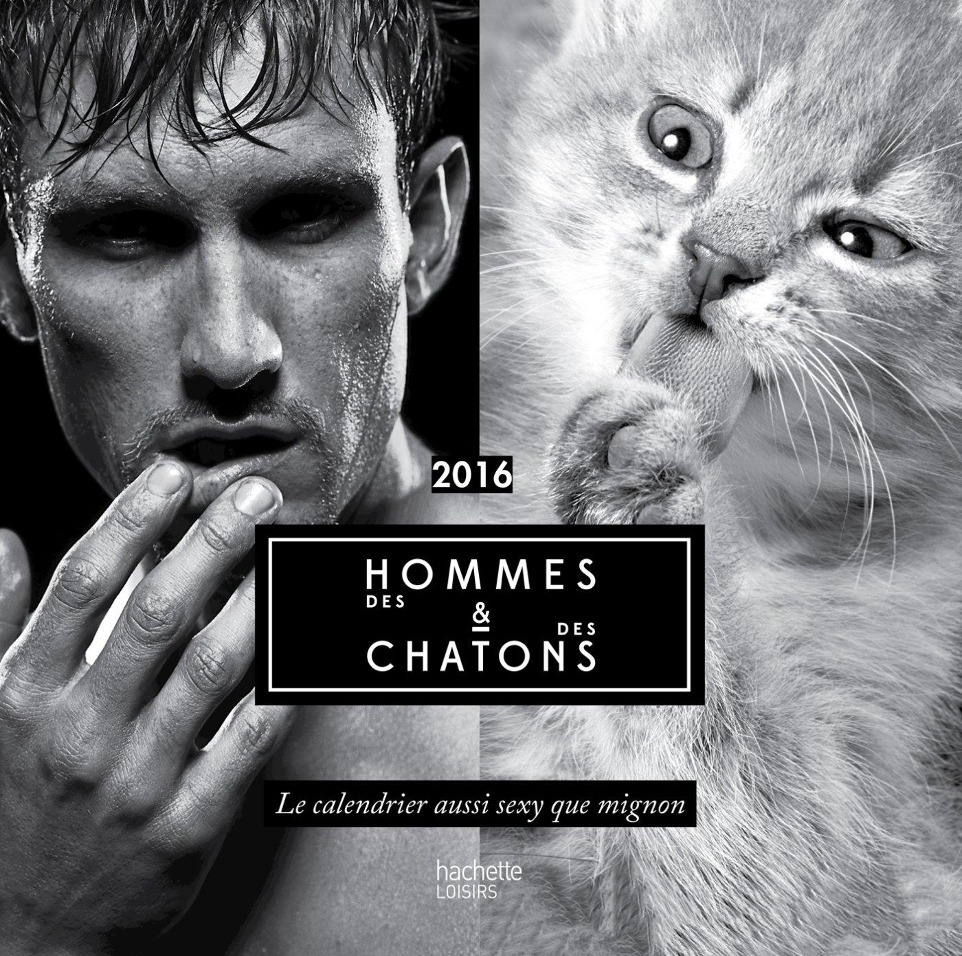 """Des Hommes Et Chatons des hommes & des chatons"""" 2016, le calendrier aussi sexy que mignon"""