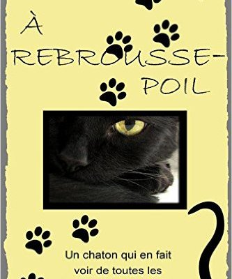 A rebrousse-poil (roman)