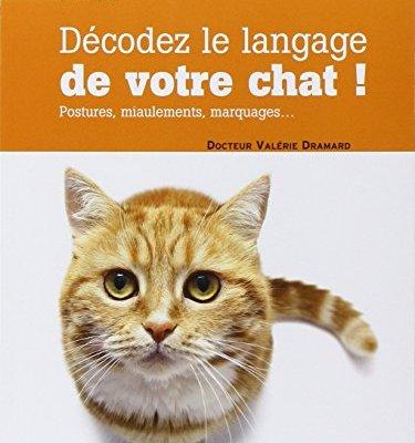 Dcodez-le-langage-de-votre-chat-Postures-miaulements-marquages-0