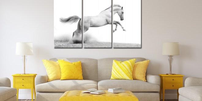 Des tableaux avec des animaux pour une décoration tendance