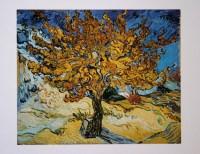 Vincent VAN GOGH : Il gelso, 1889, Riproduzione, Stampa d ...