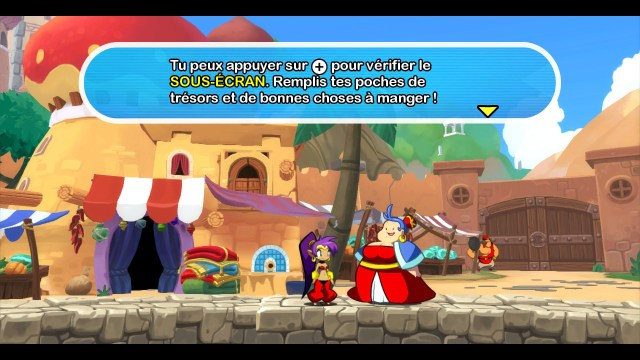 Shantae Half Genie Hero - message place
