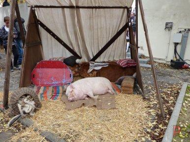 Hero Festival Saison 5 - animaux de la ferme