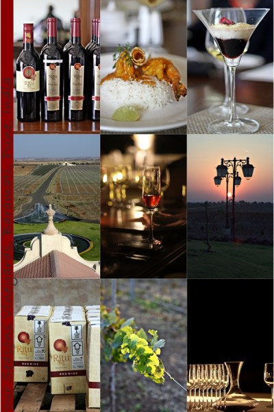 Blog Event | Visit to the Four Seasons Winery, Baramati, Pune, India