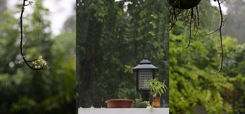 Monsoons, North India