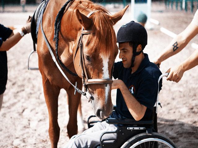 cavallo e sedia