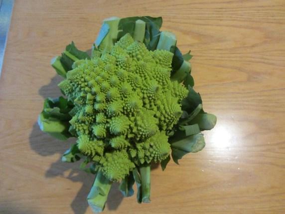come-fare-mangiare-verdura-ai-bambini-pasta-con-crema-di-broccoli