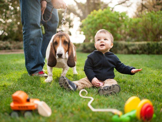 bambino_1_anno_gioca_in_giardino