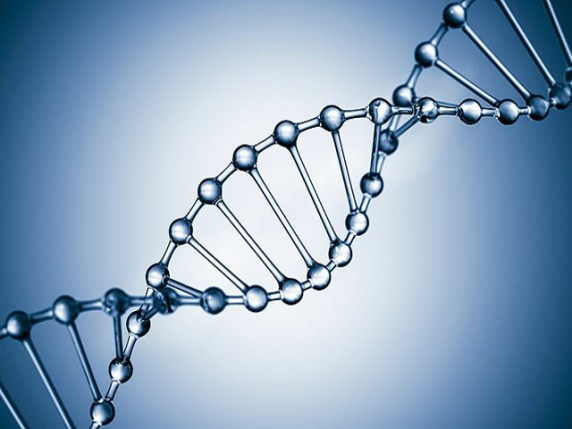 foto_genoma