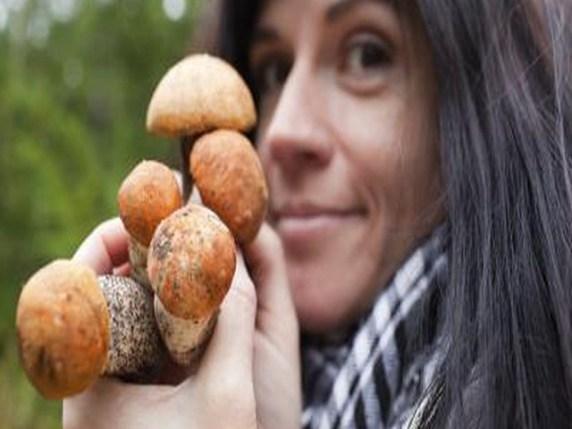 funghi porcini in gravidanza