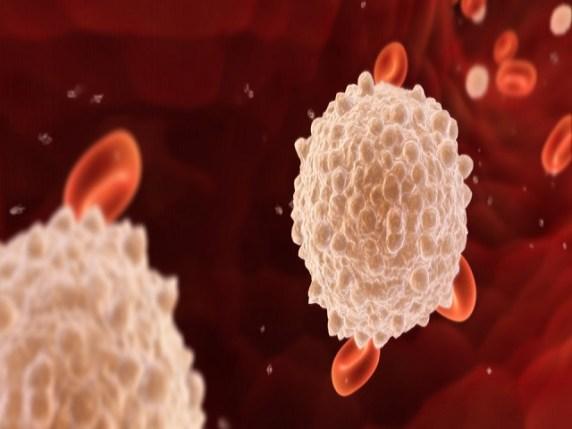 linfociti bassi in gravidanza