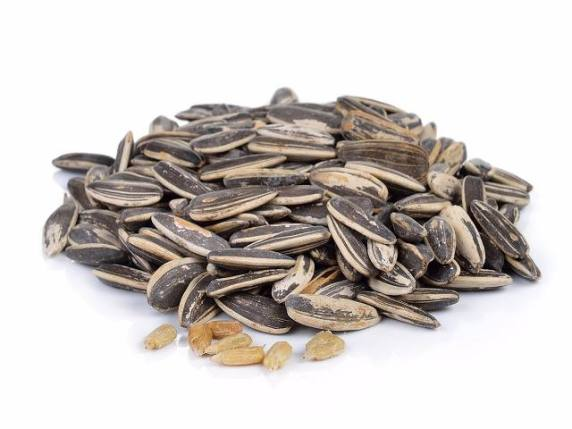 semi di girasole in gravidanza