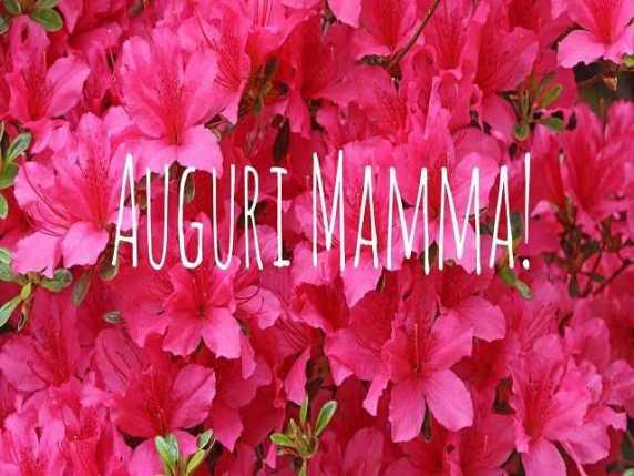 Auguri Mamma Le Parole Più Belle Da Usare Passione Mamma