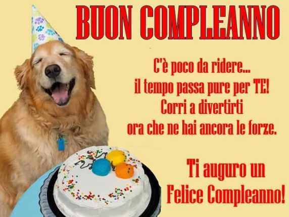 foto buon compleanno divertente 13