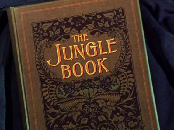 foto il libro della giungla differenze libro cartone