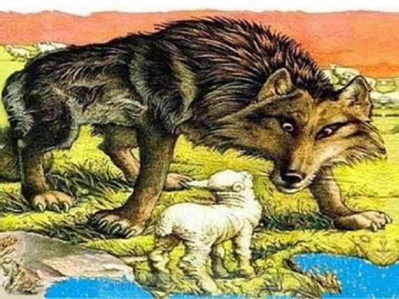 foto il lupo e l'agnello