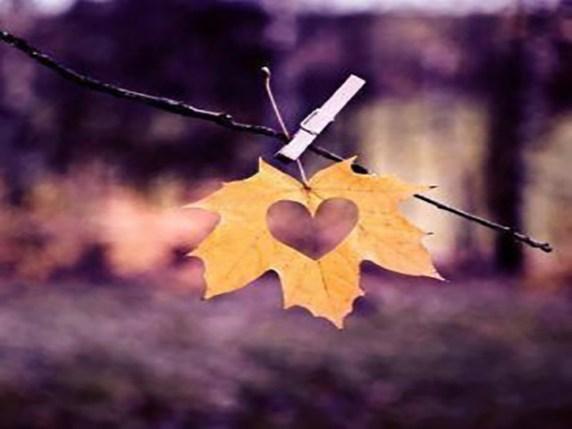 Foto Immagini romantiche 13