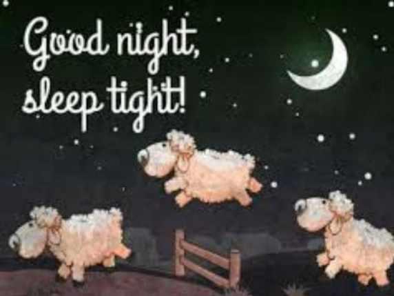 foto immagini spiritose buonanotte pecore