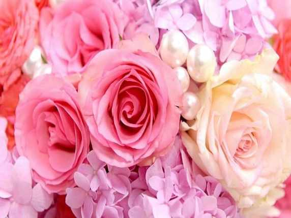 Foto fiori