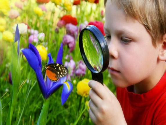 bambino natura montessori