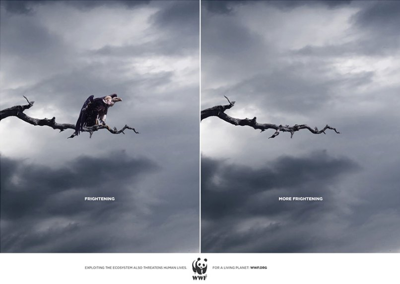 public-social-ads-animals-125[1]