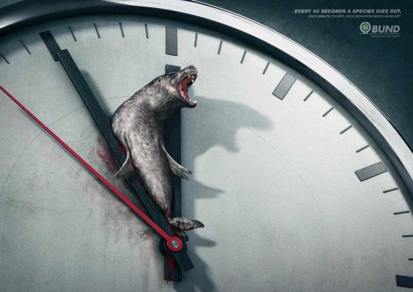 Campagna animalista. Orologio Foca