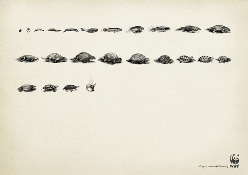 public-social-ads-animals-55[1]