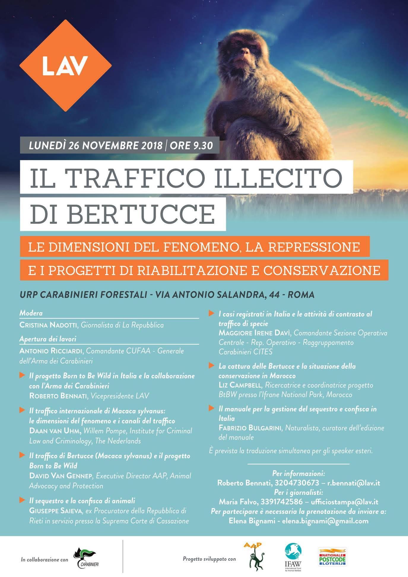 IL TRAFFICO ILLECITO DI BERTUCCE. Evento LAV in collaborazione con l'Arma dei Carabinieri, AAP e IFAW