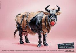 Foundation Tier im Recht - 3D Animals 1bull