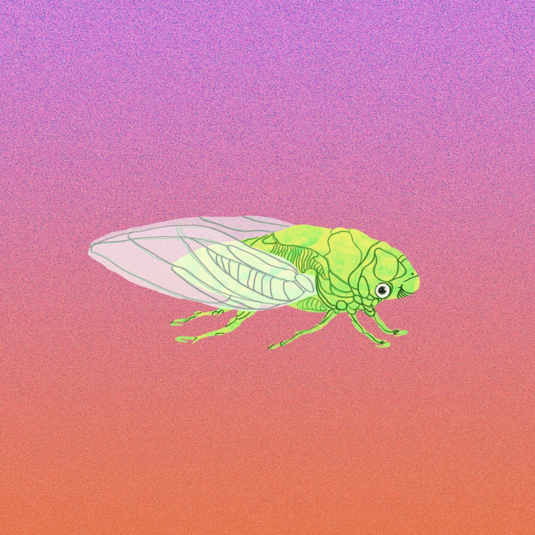 Paul Giorgi presenta il 2 settembre il suo singolo Cicale
