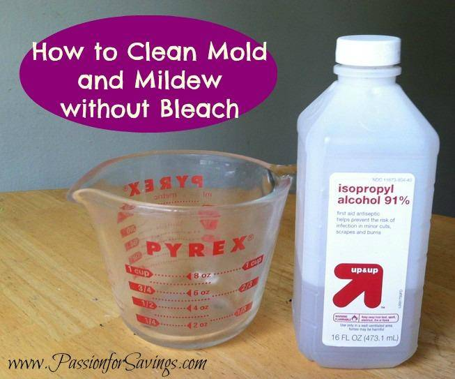 How to Get rid of Mold and Mildew Without Bleach - Passion ...