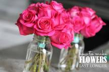 Make Fresh Flowers Longer