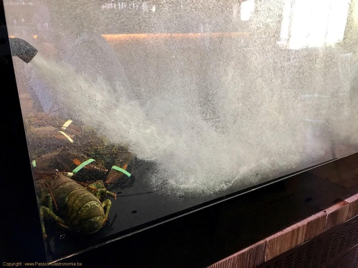 Restaurant La ferme des 4 saisons - Le vivier de homards