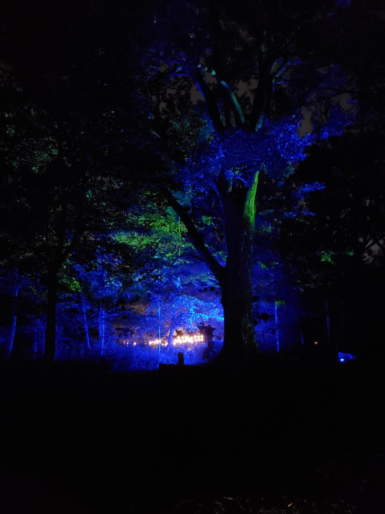 Les Jardins de lumière au Jardin Botanique