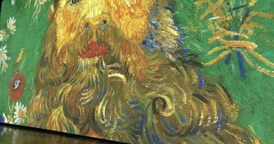 Imagine Van Gogh, de l'émerveillement tout en images