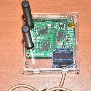 Tableau de Relais Prise en charge de points nodaux USB duplex MMDVM P25 DMR YSF NXDN Pi + Antenne Raspberry Pi + 2pcs + Etui + Carte TFT OLED + 8G Carte D'extension ( Couleur : Transparent )