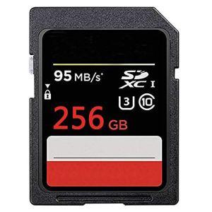 YTBLF Carte mémoire Haute Vitesse pour Appareil Photo numérique Micro-Reflex Carte mémoire 95M / s 32GB / 64GB / 128GB / 256GB,256GB