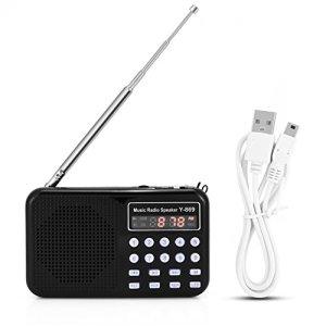 Baverta Radio FM – Carte TF de Haut-Parleur de Haut-Parleur de Musique de Lecteur Audio avec Lampe de Poche