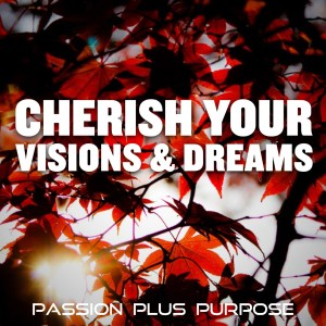 PassionPlusPurpose - Cherish your visions & dreams
