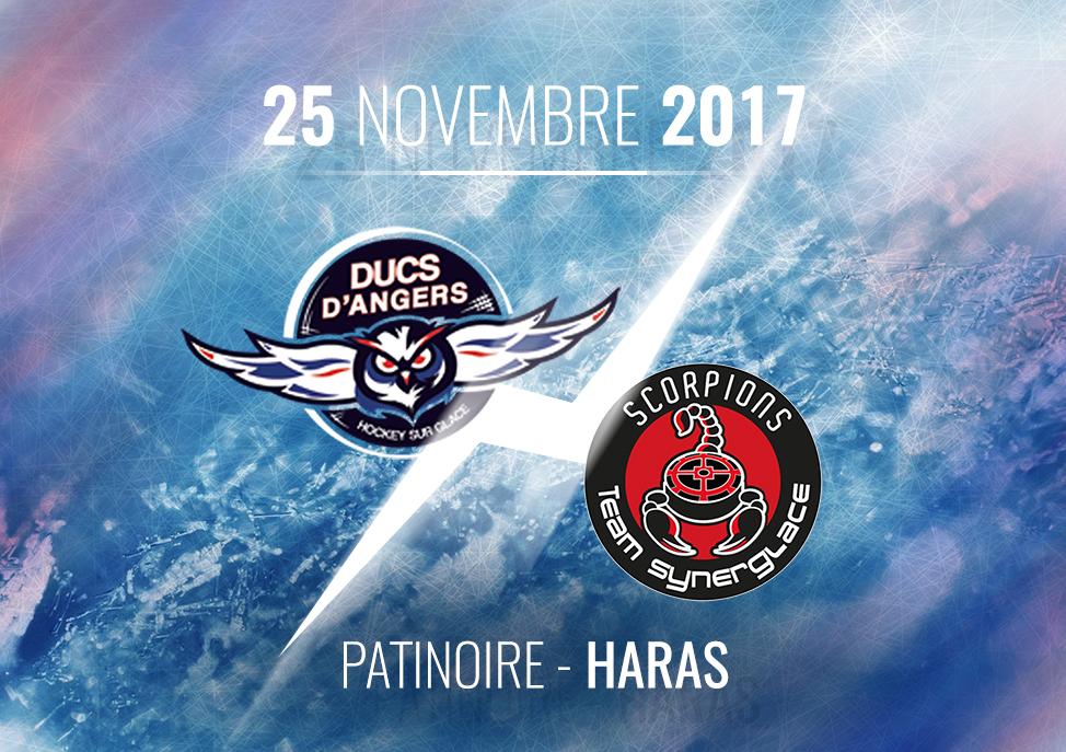 Ligue Magnus (22e journée) : Les Ducs doivent confirmer face à Mulhouse, ce samedi, à 21h10.