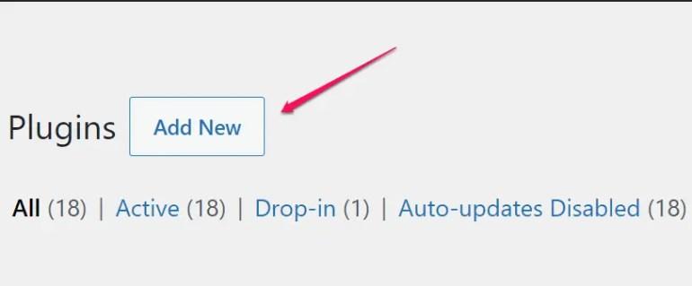 Cómo instalar un  Plugingde WordPress