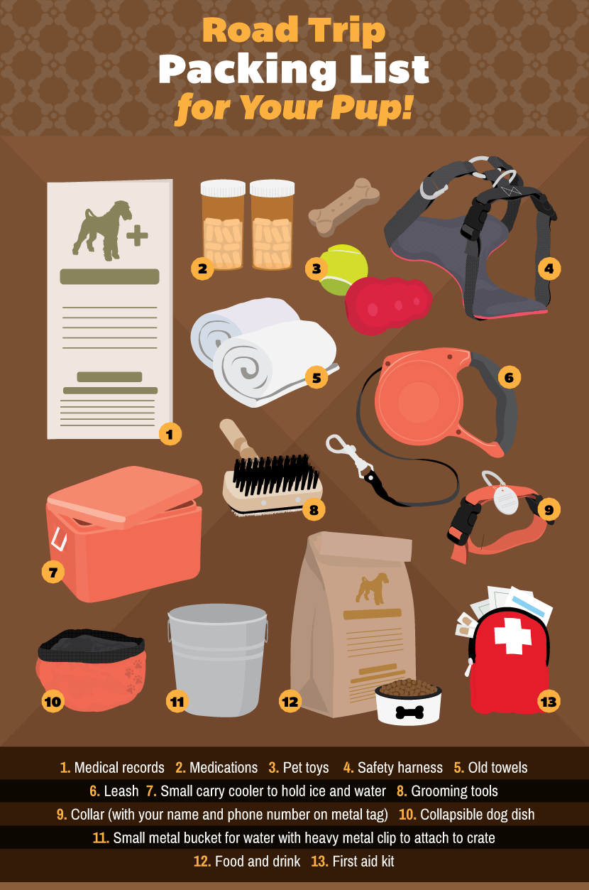 Packing List For Dogs