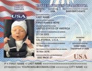 Minor Passport