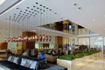 Sheraton Grand Dubai Hotel Passport & Palmtree