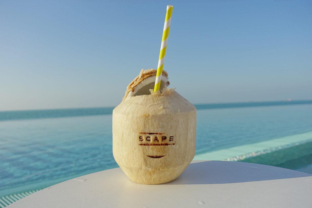 Dubai Beach Club Burj Al Arab Terrace Review Passport Palmtree