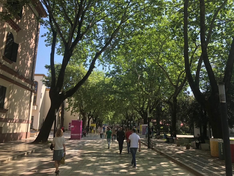 Tirana Free Walking Tour: Walking down Rruga Murat Toptani