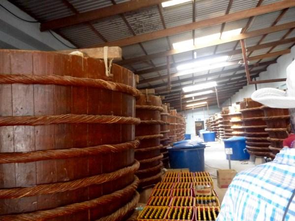 10 fish sauce factory