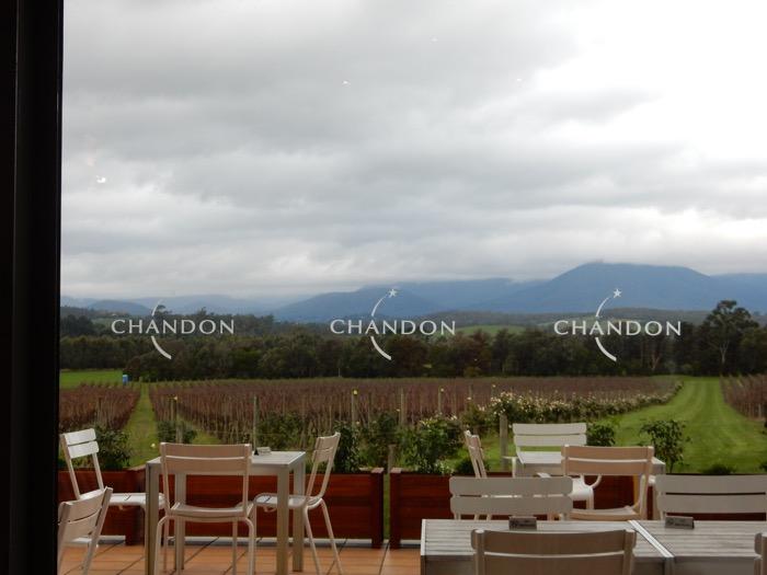 Chandon Winery 12