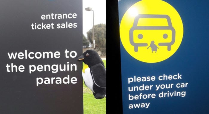 Penguin Parade Signs