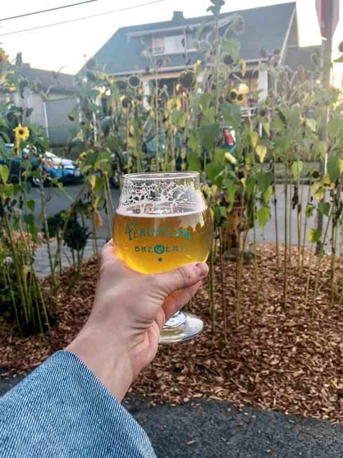 Beer at Perihelion Brewery
